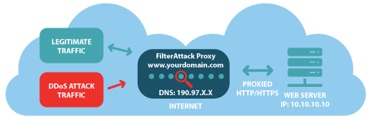 DDoS Protection Proxy
